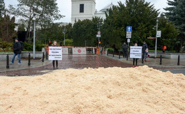 Trociny przed Sejmem