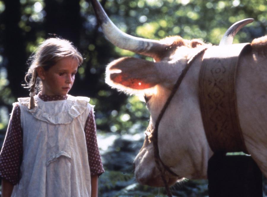 \'\'Krowy\'\'. Miłość i wojny w czasach sielanki