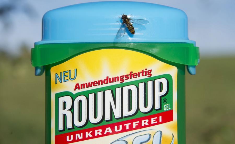 Środek chwastobójczy Roundup