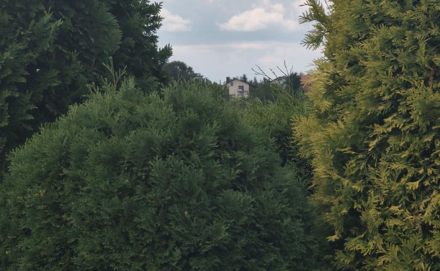 Zdjęcie wykonane telefonem Oppo Reno 10x Zoom - 6x zoom