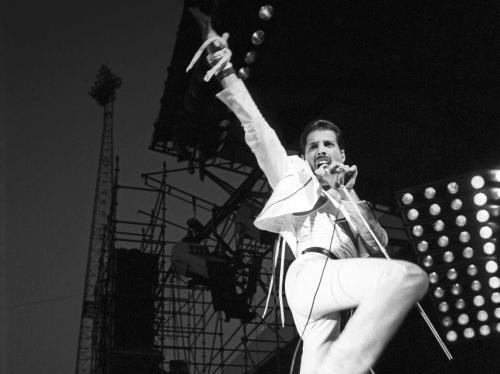Skradziono tablicę pamiątkową Freddiego Mercury\'ego