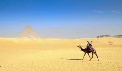 Biuro podróży organizowało wycieczki głównie do Egiptu