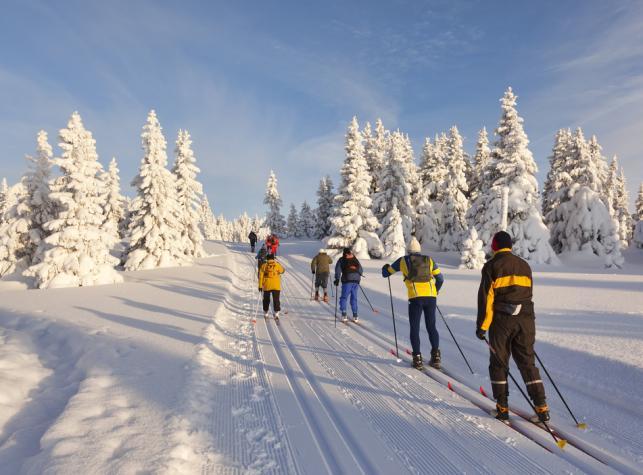 narciarze narty trasa