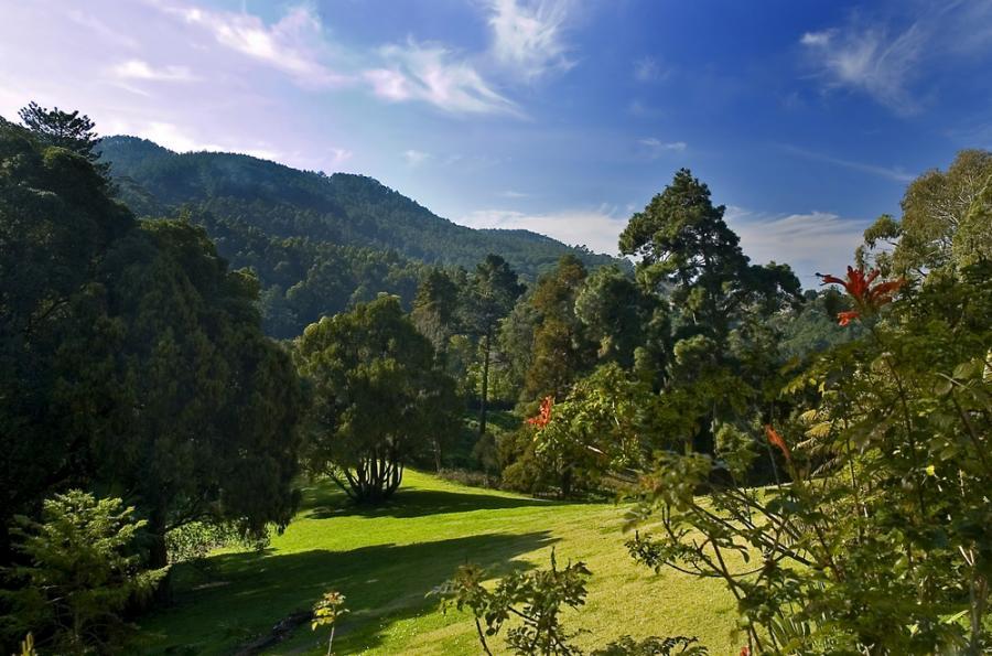 Park Monserrate