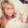 Paris Hilton też przyłączyła siędo akcji Wake Up Call