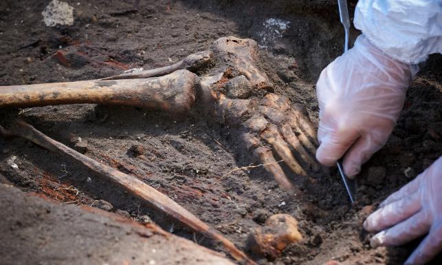 Tutaj znaleziono szczątki \