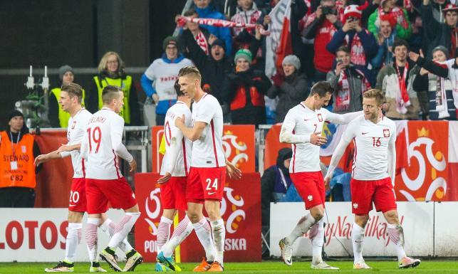 Euro 2016: To oni zagrają dla Polski na ME we Francji. Zobacz sylwetki kadrowiczów Nawałki