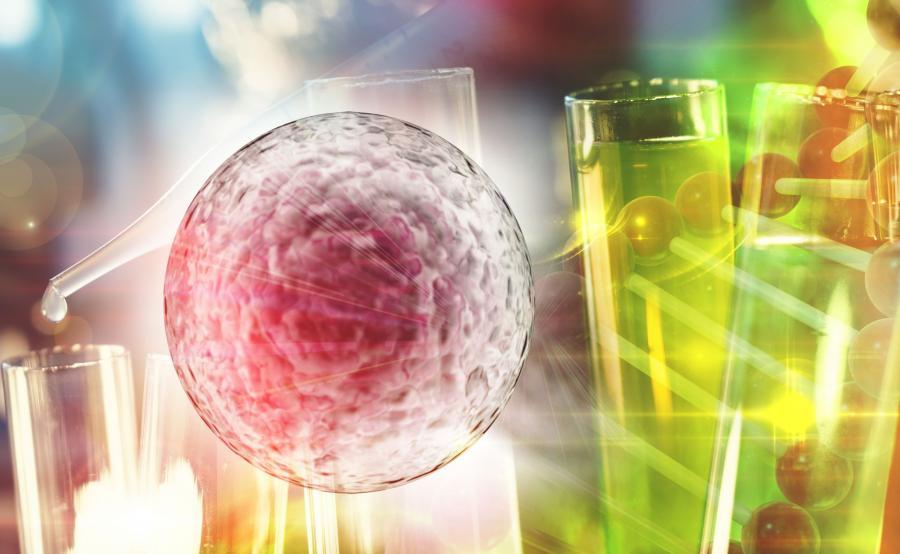 Komórka rakowa i probówki